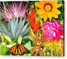Butterfly In The Flowers Acrylic Print by Van Ness