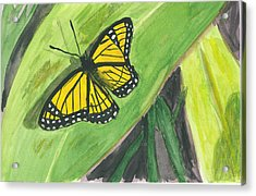 Acrylic Print featuring the painting Butterfly In Vermont Corn Field by Donna Walsh