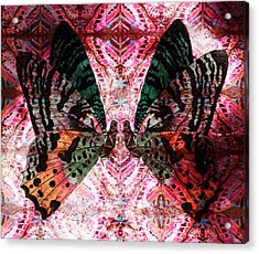 Acrylic Print featuring the digital art Butterfly Kaleidoscope by Kyle Hanson
