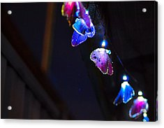 Acrylic Print featuring the photograph Butterfly Lights Hanging At Night  by Naomi Burgess