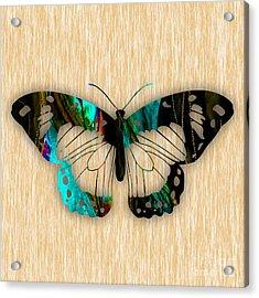 Butterfly Acrylic Print by Marvin Blaine