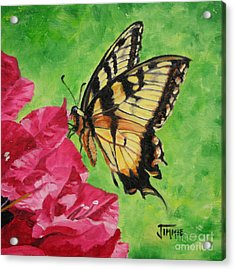 Acrylic Print featuring the painting Butterfly On Bougainvillea by Jimmie Bartlett