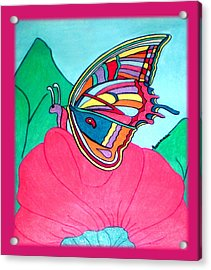 Butterfly On Pink Flower Acrylic Print by Claire Decker