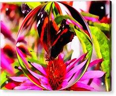 Butterfly Orb Acrylic Print
