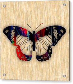 Butterfly Painting Acrylic Print