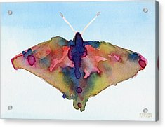 Butterfly Pink Yellow Blue Watercolor Art Print Acrylic Print by Beverly Brown