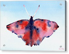 Butterfly Red And Blue Watercolor Painting Acrylic Print