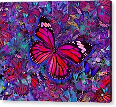 Butterfly Red Explosion Acrylic Print by Alixandra Mullins