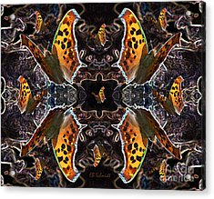 Acrylic Print featuring the digital art Butterfly Reflections 05 - Eastern Comma by E B Schmidt