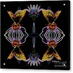 Acrylic Print featuring the digital art Butterfly Reflections 10  - Great Spangled Fritillary by E B Schmidt