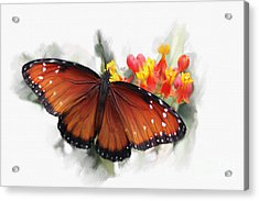 Butterfly Acrylic Print by Roger Lighterness