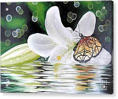 Butterfly Series Seven Acrylic Print
