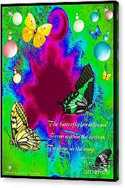 Butterfly Shows The Way Acrylic Print