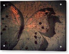 Butterfly Sunset Symphony Acrylic Print
