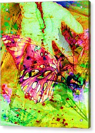 Acrylic Print featuring the painting Butterfly That Was A Muscian by David Mckinney