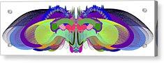 Butterfly - Ticker Symbol Csco Acrylic Print