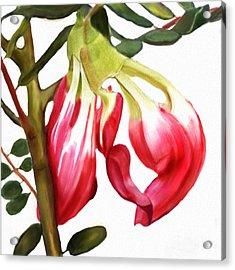 Butterfly Tree Acrylic Print