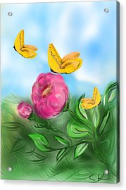 Acrylic Print featuring the digital art Butterfly Triplets by Christine Fournier
