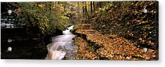 Buttermilk Creek, Ithaca, New York Acrylic Print