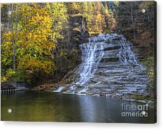 Buttermilk Falls Autumn Acrylic Print by Colin D Young
