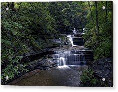 Buttermilk Waterfalls Acrylic Print by David Simons