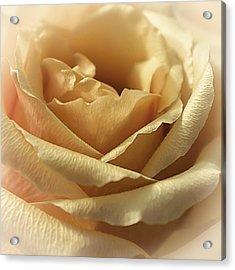Butterscotch Sundae Acrylic Print by Darlene Kwiatkowski