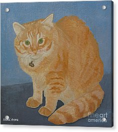 Butterscotch The Cat Acrylic Print by Mini Arora