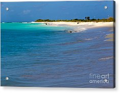 Bvi At Its Best Acrylic Print by Beverly Tabet