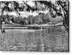 Bw Lake Views  Acrylic Print by Chuck Kuhn
