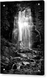 Bw Waterfall Acrylic Print