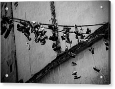 By A Shoestring Acrylic Print by Dan  Grover
