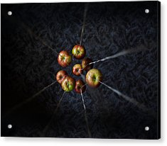 Acrylic Print featuring the photograph By A Thread by Aaron Aldrich