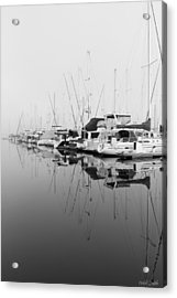 By Chance Acrylic Print by Heidi Smith