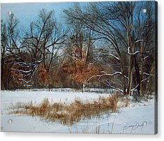 By Rattlesnake Creek Acrylic Print by Denny Dowdy