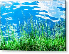 By The Blue Water Acrylic Print by Alexander Senin