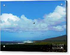 By The Sea Acrylic Print by Helen Xiao