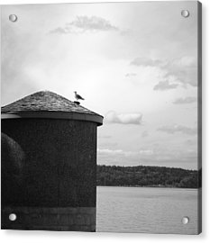 Acrylic Print featuring the photograph By The Water by Kjirsten Collier