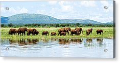 By The Water Panoramic  Acrylic Print by Stephanie Frankle