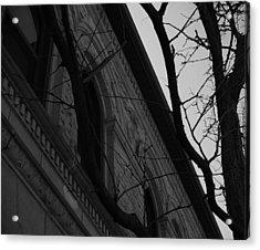 Bystander Perspective Acrylic Print
