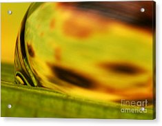 C Ribet Orbscape 0835 Acrylic Print by C Ribet