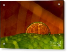 C Ribet Orbscape In The Belly Of Fury Acrylic Print