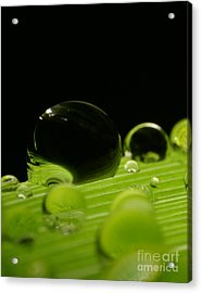 C Ribet Orbscape Water Soul Acrylic Print by C Ribet