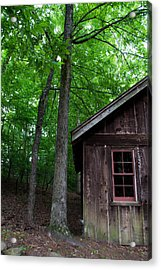 Cabin Acrylic Print by Shelby  Young