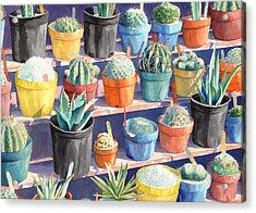 Cacti Chorusline Acrylic Print