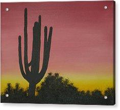 Cactus At Dawn Acrylic Print by Aaron Thomas