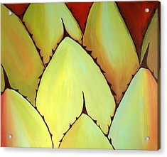 Cactus Close Up Acrylic Print by Karyn Robinson