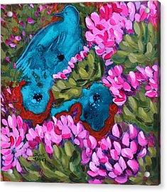 Cactus Flower Blue Bird Dream Acrylic Print