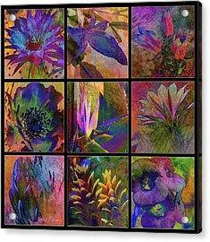Cactus Flowers Acrylic Print by Barbara Berney