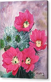 Cactus Flowers I Acrylic Print by Mike Robles
