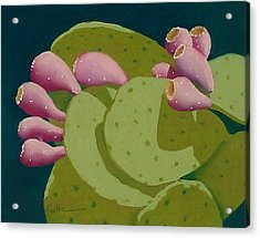 Cactus Fruit Acrylic Print by Diane Cutter